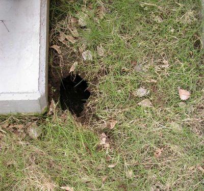 Hole_1