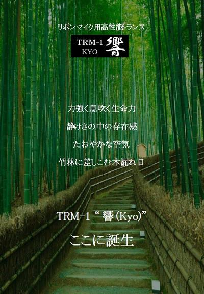 Trm1_br